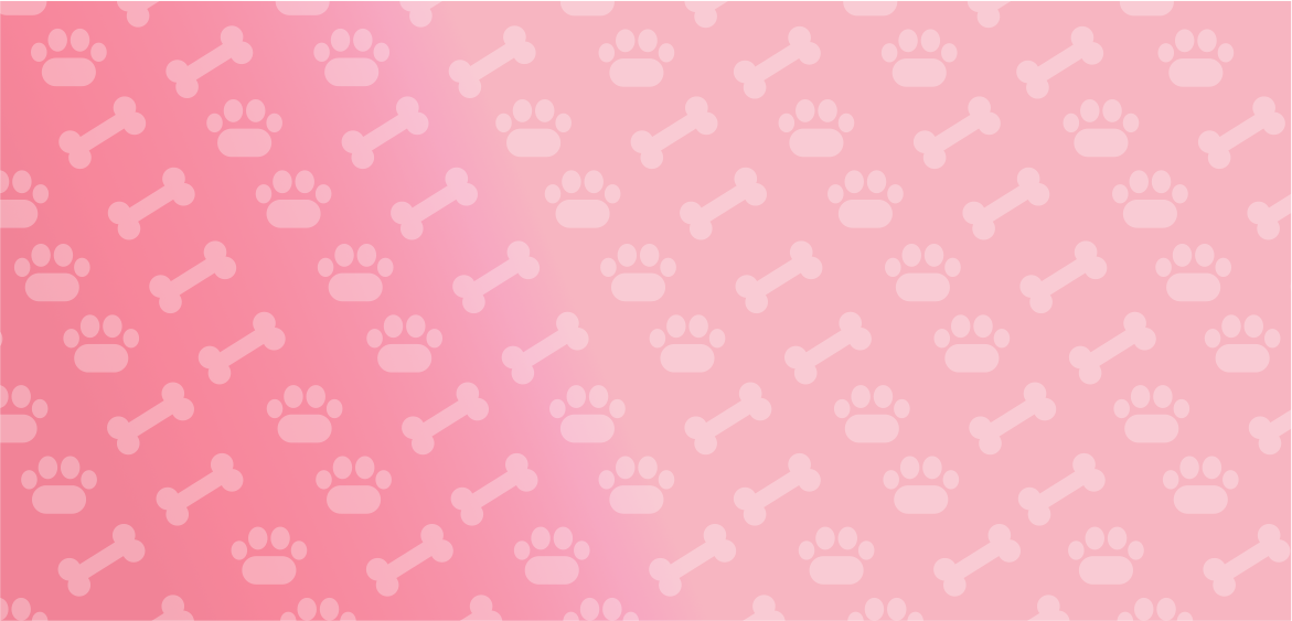 header-doggie-star-bk